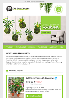 Newsletter Template Vorlage - Newsletter2Go