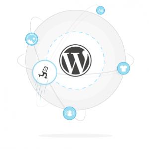 WordPress Newsletter Plugin