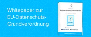 kleiner_teaser_Whitepaper_DSGVO-Newsletter2Go