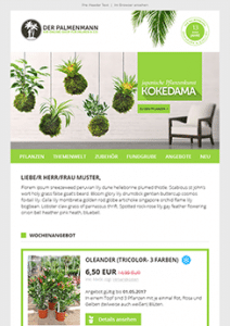 grün_Palmenmann_Newsletter2Go